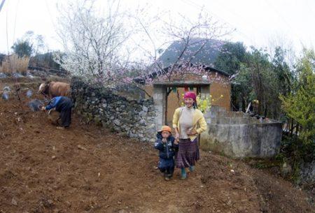 Mùa xuân trên cao nguyên đá Đồng Văn (Hà Giang).Ảnh:TRỌNG HẢI