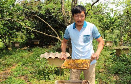 Anh Vũ Thành Duy đang chăm sóc đàn ong  của gia đình.