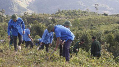Đội viên TTTTN Đội sản xuất và xây dựng cơ sở chính trị số 1 tham gia giúp nhân dân bản Nà Ẳn, xã Mường Lạn phát quang thực bì chuẩn bị trồng rừng phòng hộ.